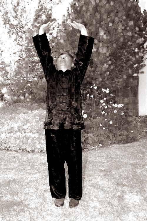 Eighteen Lohan Hands - Sifu Wong Lifting the Sky